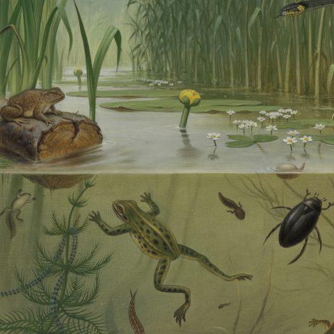 Waarom het helemaal niet zo héél ingewikkeld is om ons leven ecologisch te beteren