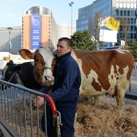 Waarom het Europees Parlement zo vatbaar is voor belangenconflicten