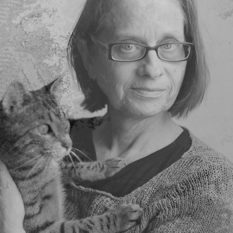 Literaire Kroniek: In de werkplaats van Lydia Davis, taalkundig timmerman