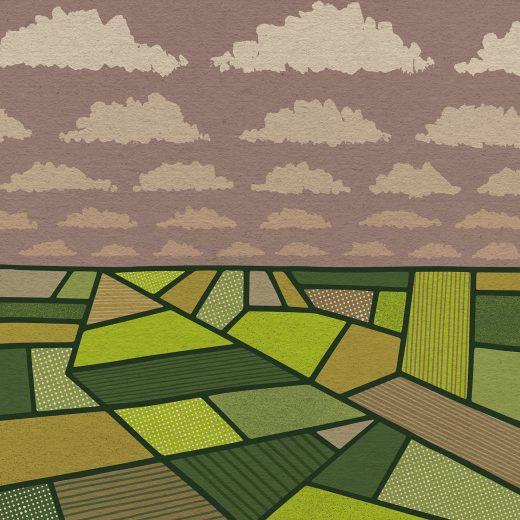 Reconstructie: Hoe de boeren hun macht zagen verwelken