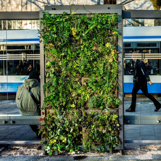 De donuteconomie in de praktijk: hoe Amsterdam socialer en duurzamer wil worden