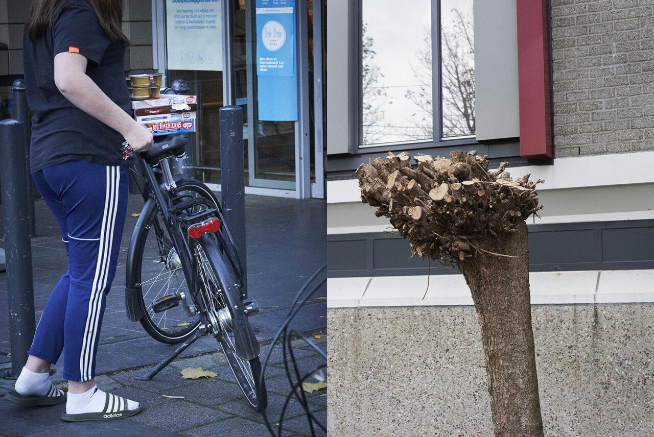 Tweeluik van foto's van een kaalgesnoeide boom bij een flat respectievelijk een voorbijganger in trainingsbroek en slippers