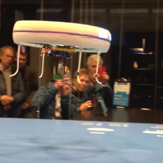 Net Chriet Titulaer, deze hilarische drone-filmpjes