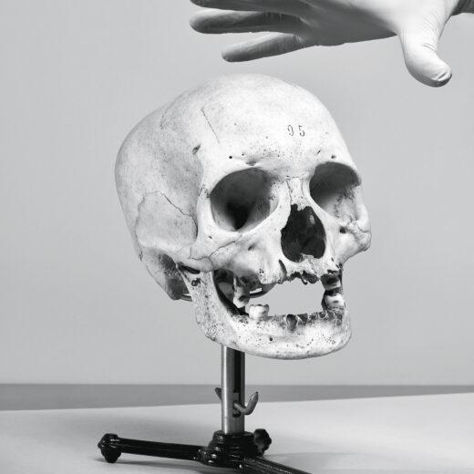 Kasten vol schuldgevoel: wat te doen met schedels en botten uit de koloniale tijd?