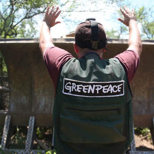 #MeToo in de milieusector: seksuele intimidatie bij Greenpeace