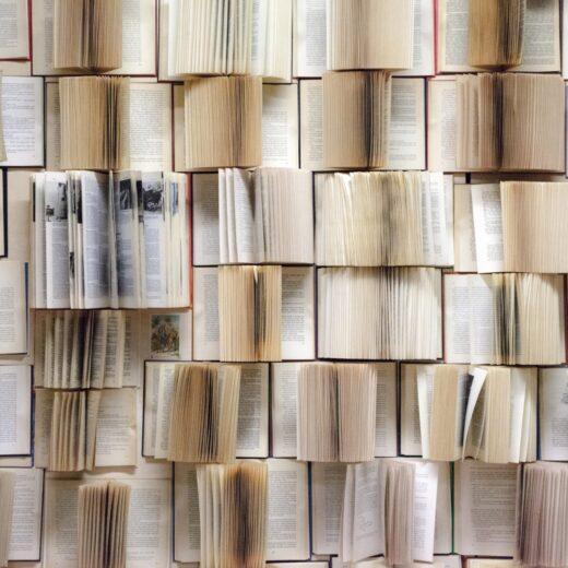 De ongelezen boeken uit de kast: 'De Donkere kamer van Damokles'
