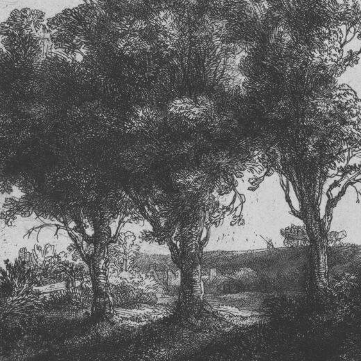 Literaire Kroniek: Rembrandt was geen veelzijdig kunstenaar, maar álzijdig