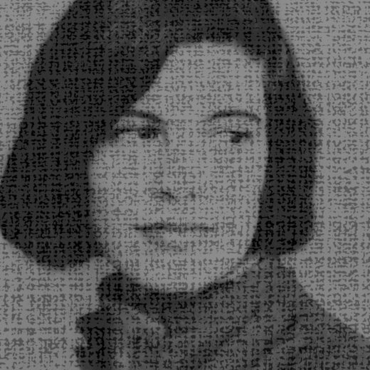 Literaire Kroniek: Susan Sontag, van buiten zelfverzekerd, van binnen een en al onzekerheid
