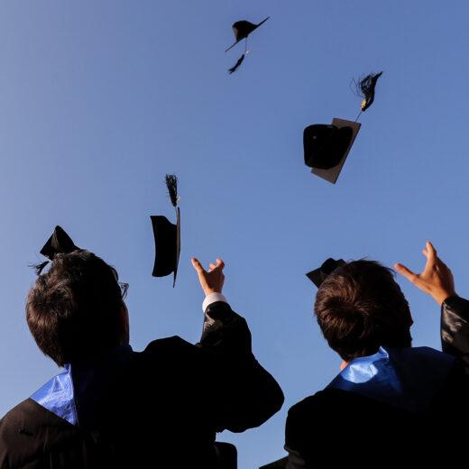 Hoe alles wordt teruggebracht tot diploma's
