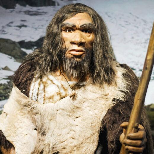 Een lesje in nederigheid van de neanderthalers