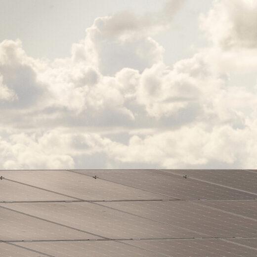 De zonneparkstrijd: klimaatbelang versus natuur en landschap